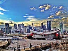 Calgary business web